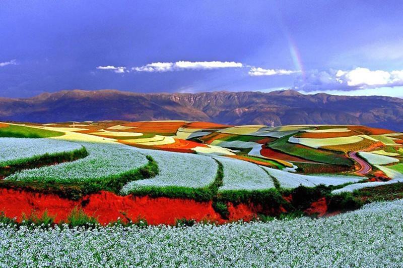 Luosiwan à la Terre Rouge de Dongchuan, Kunming